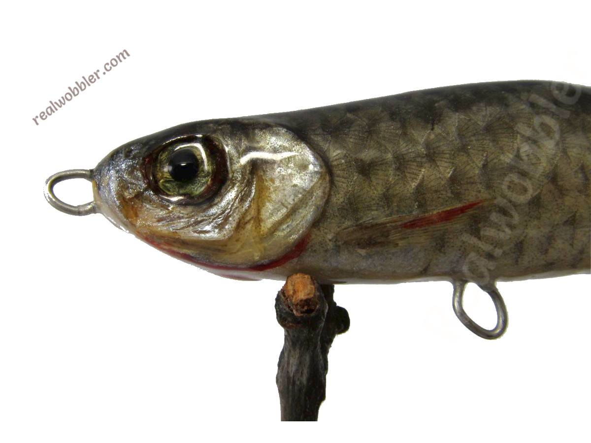 Custom wooden fishing jerkbaits with real fish skin eyes for Fish eye skin