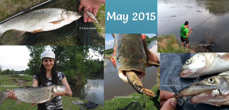 Catches in May 2015