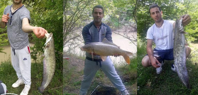 Catfish and Carp that Georgi caught on his Retro Silver Crankbait