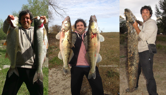 Tsvetmir with Some of his Catches