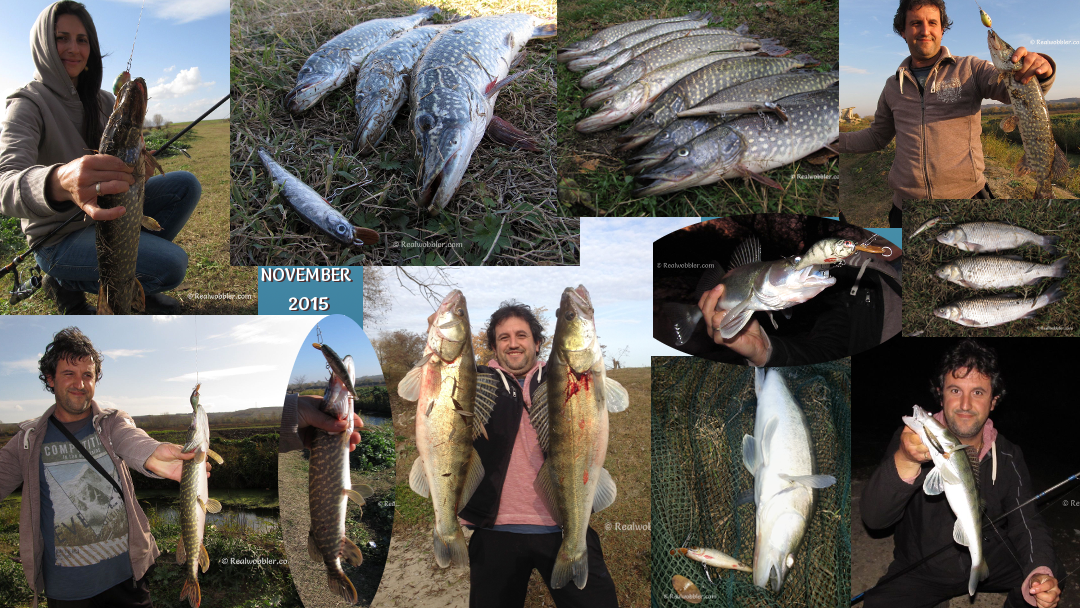 Fishing Results from November 2015 with Realwobbler Custom Lures