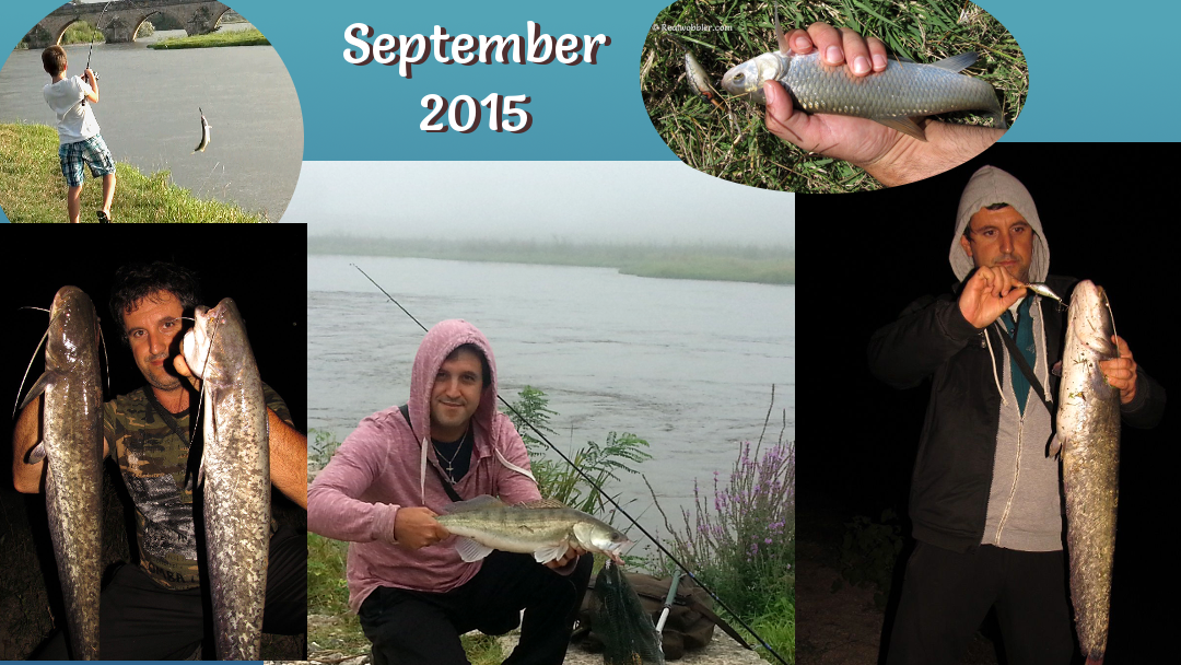 Catches in September 2015 with Realwobbler Skin Lures
